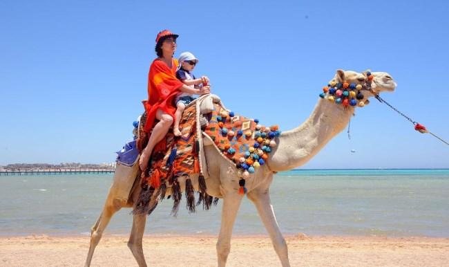 Турция или Египет – что лучше для семейного и пляжного отдыха