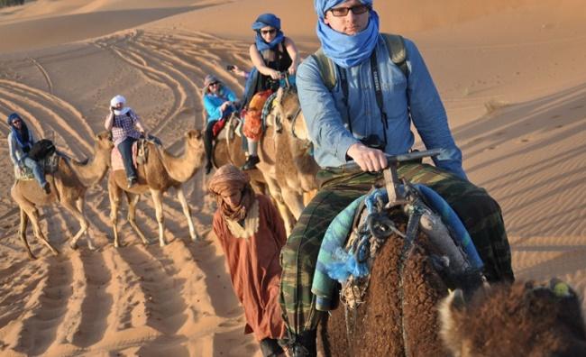 Вереница верблюдов