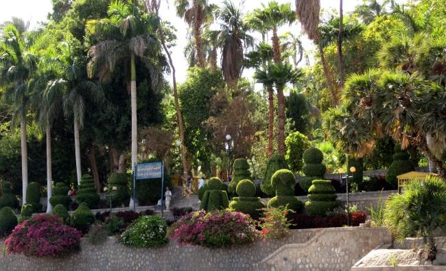 Ботанический сад в Асуане