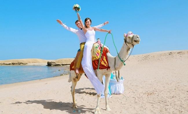 Молодожены на верблюде